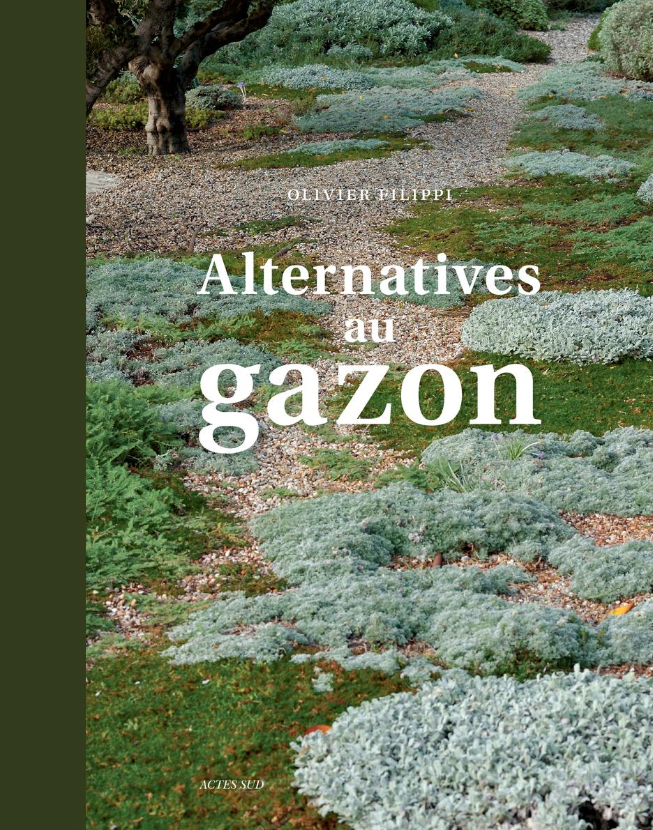 , Alternatives au gazon