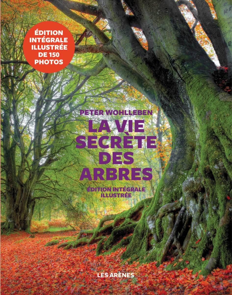 , La Vie secrète des arbres  Édition intégrale illustrée