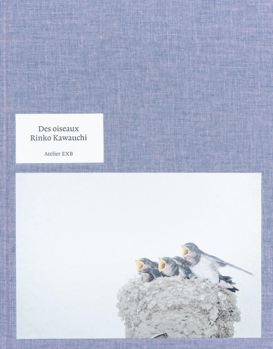 Guilhem Lesaffre, Des oiseaux - Rinko Kawauchi