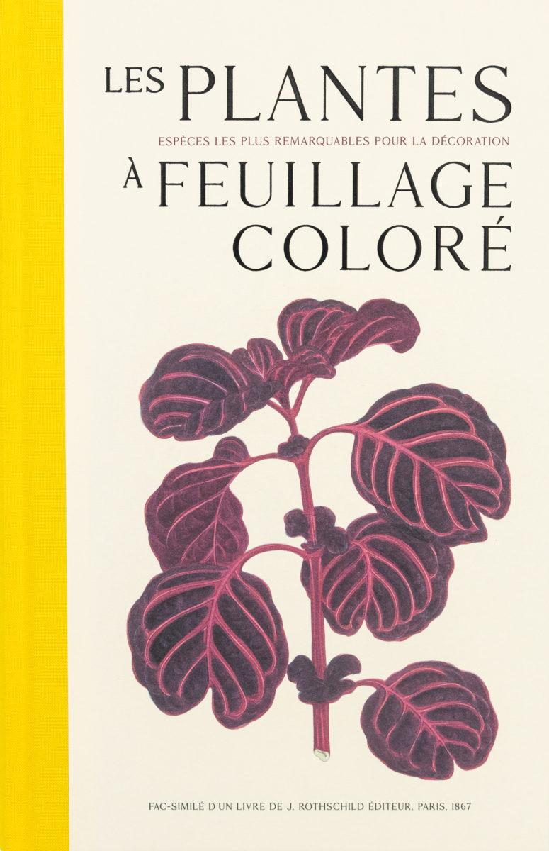 Edward Joseph Lowe, William Howard., Les plantes à feuillage coloré