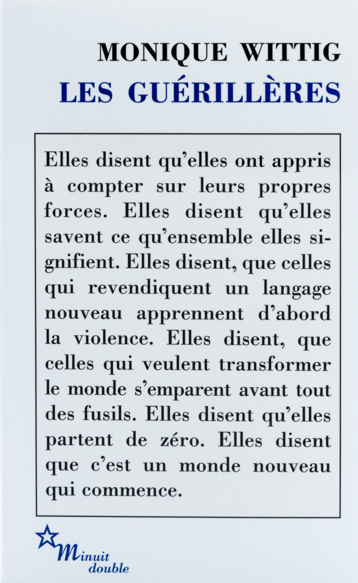 Monique Wittig, Les Guérillères